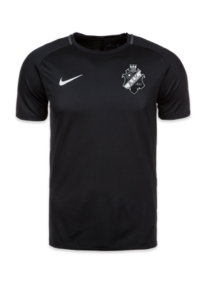 Nike acdmy training top